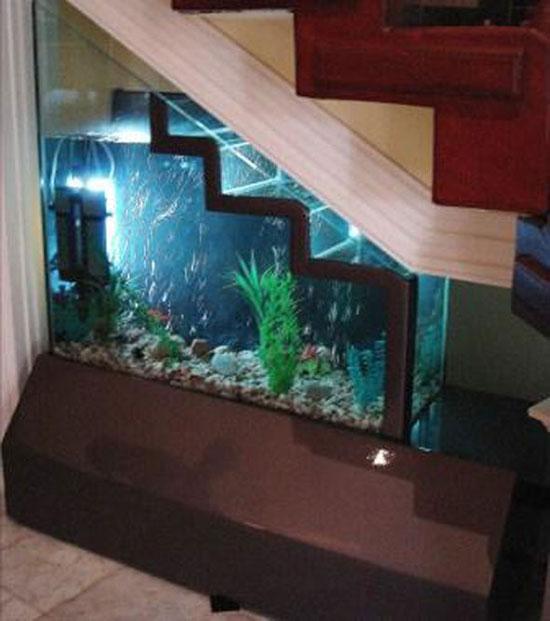 aquarium design sous escalier